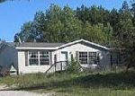 Foreclosure for sale in Cheboygan 49721 N BLACK RIVER RD - Property ID: 1664405141