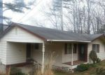Foreclosure for sale in Wildwood 30757 PINEWAY CIR - Property ID: 2590685106