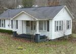 Bank Foreclosure for sale in Roan Mountain 37687 DOE LN - Property ID: 3016453655