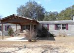 Bank Foreclosure for sale in Chipley 32428 SPOTTED HORSE LN - Property ID: 3101812596
