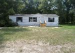 Bank Foreclosure for sale in Bascom 32423 KLONDIKE RD - Property ID: 3257401992