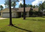 Bank Foreclosure for sale in Panama City 32409 SKUNK VALLEY RD - Property ID: 3376843621