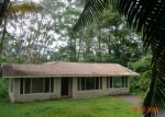 Foreclosed Home ID: 03687122803