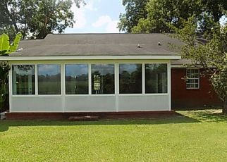 Bank Foreclosure for sale in Webb 36376 ENON RD - Property ID: 1859361389