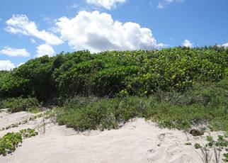Bank Foreclosure for sale in Melbourne Beach 32951 S HIGHWAY A1A - Property ID: 3826818537