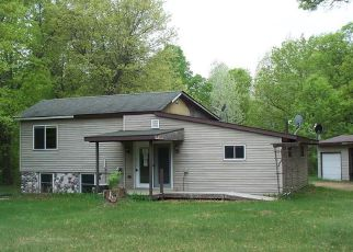 Bank Foreclosure for sale in Siren 54872 MALONE RD - Property ID: 4264220998