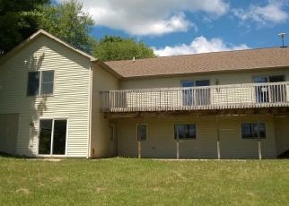 Bank Foreclosure for sale in White Cloud 49349 W BRANDT ST - Property ID: 4297138670