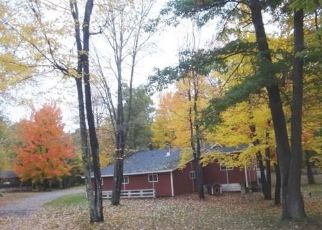 Bank Foreclosure for sale in Solon Springs 54873 E COUNTY ROAD A - Property ID: 4299329412