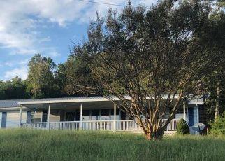 Bank Foreclosure for sale in Luttrell 37779 TEXAS HOLLOW RD - Property ID: 4299956143