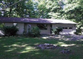 Bank Foreclosure for sale in Lake Leelanau 49653 E KIRT RD - Property ID: 4305029197