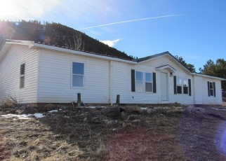 Bank Foreclosure for sale in Cotopaxi 81223 DEER RUN DR - Property ID: 4341162503