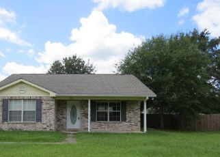 Bank Foreclosure for sale in Kiln 39556 ALYSSA LN - Property ID: 4412538240