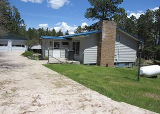 Bank Foreclosure for sale in Custer 57730 LEISENGER LN - Property ID: 4415273840