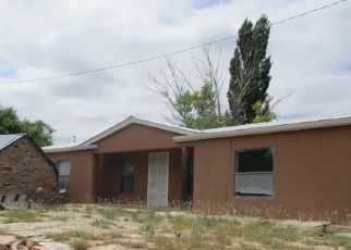 Bank Foreclosure for sale in La Loma 87724 HIGHWAY 84 - Property ID: 4417945920