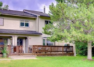Pre Foreclosure in Steamboat Springs 80487 BALSAM CT - Property ID: 1007053933