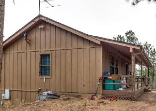Pre Foreclosure in Sedalia 80135 HILL DR - Property ID: 1075329696