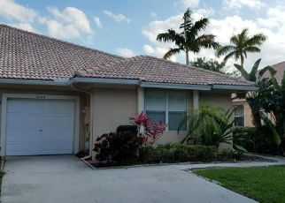 CORAL TRACE PL