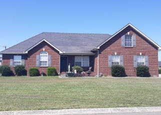 Sheriff Sale in Murfreesboro 37127 MURAL LN - Property ID: 70191488808